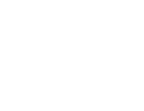 Government relations for DTA